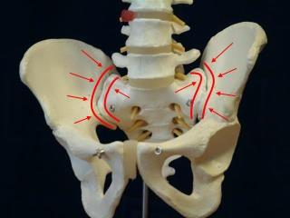 Sacroiliac Joint Discomfort